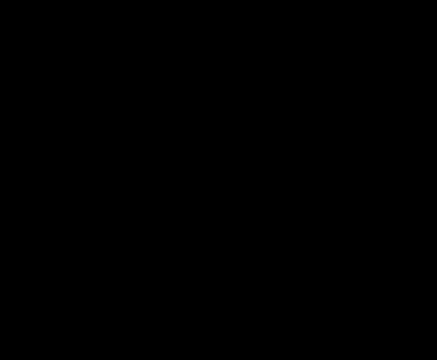 silueta domu